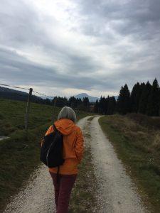 walk in cansiglio