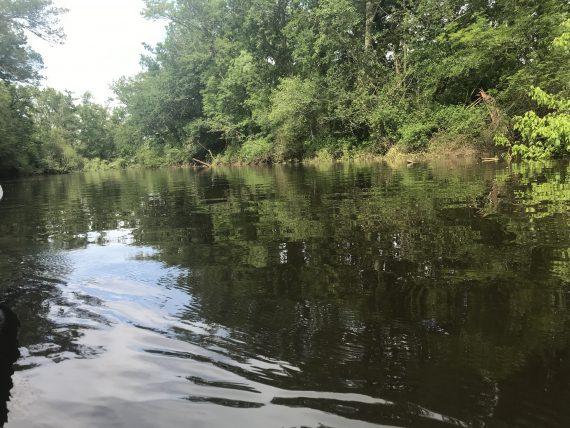 Leyre river